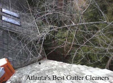 Roswell's Best Gutter Cleaners Before and After Tree Pruning